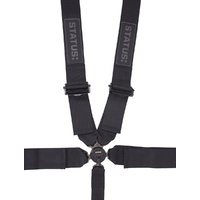 FIA Certified 5 point Camlock Harness